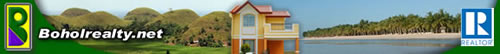 Bohol Realty - Panglao beach property - affordable house and Lot - overlooking view - commercial property - investment property - beach front properties - For Rent - No Downpayment - Financing - Bohol Real  Estate - Bohol Properties  - subdivision - condominium - apartment